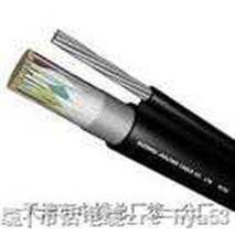 多芯屏蔽电子计 算机电缆DJYVP;DJYPVP