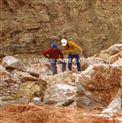 矿石含量分析仪