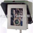 在線式天然氣露點儀DPT-910