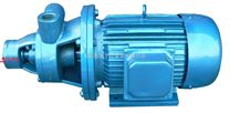 W型漩涡泵  单级旋涡泵  高扬程泵  不锈钢旋涡泵