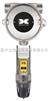 乙醇氣體檢測儀DM-700型