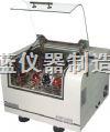 全温型多振幅轨道摇床ZHWY-200B