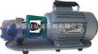 油泵廠家:手提式不鏽鋼齒輪油泵