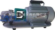 油泵厂家:手提式不锈钢齿轮油泵