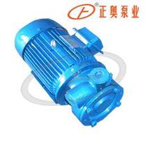 单级直联旋涡泵