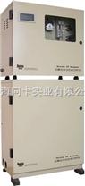 总磷全自动在线分析仪 DL2004型