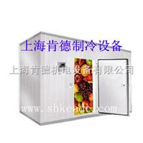 肯德冷库,上海冷库,专业冷库厂家