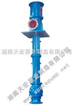 矿用长轴泵 长沙水泵长轴泵品牌天宏立式长轴泵