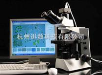 藻類計數儀|藻類鑒定計數儀—迅數Algacount R100藻類輔助鑒定計數儀