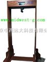 快速红外线体温仪(门式)/红外温度检测仪/红外线温度检测仪/金牌 /TZD11-H6(特价)
