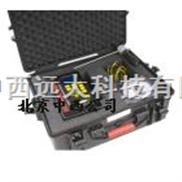 红外锅炉烟气分析仪ZX7M- M700
