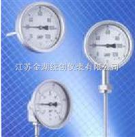 熱電偶/熱電阻雙金屬溫度計廠家