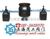 双杠杆安全阀*上海茂工安全阀