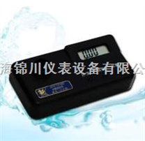 GDYS-101SN2余氯测定仪