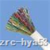 阻燃控制电缆 ZR-P