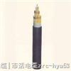 HYAT-防水通信电缆;防水通信电缆HYAT