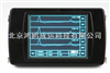 RSM-PRT(T)桩基完整性检测仪