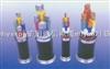 BPYJVP BPYJVP1-2铜芯交联聚乙烯绝缘聚氯乙烯护套铜丝编织屏蔽变频器用电力电缆