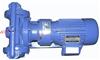 DBY型电动隔膜泵(配四氟膜)