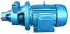 漩涡泵生产厂家:1W型单级漩涡泵