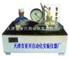 ZXY-1型真空吸水仪