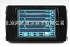 RSM-PRT(T)桩基动测仪/桩基完整性检测仪